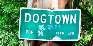 dogtown_wide
